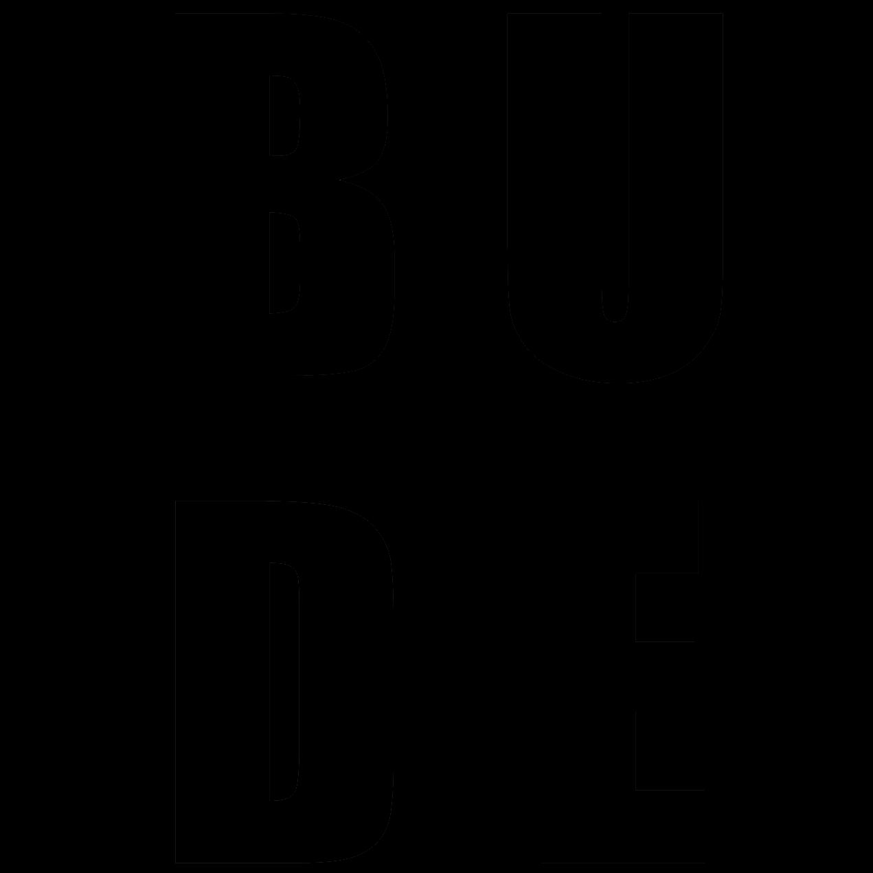 Radio BUDE