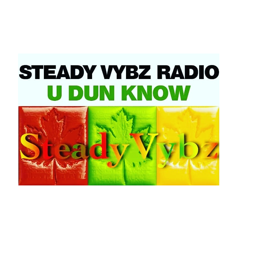 STEADY VYBZ RADIO
