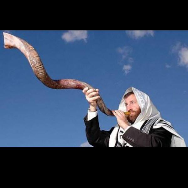 El Mesías Enviado
