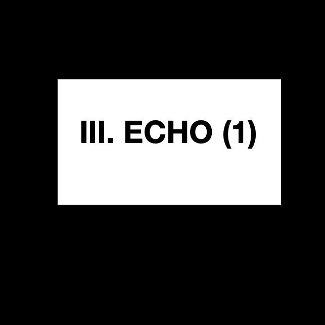 dissolutionStudies_echoPart1