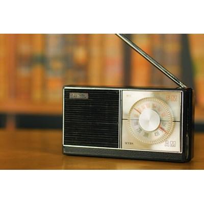 LOUISE RADIO