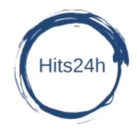 Hits24h