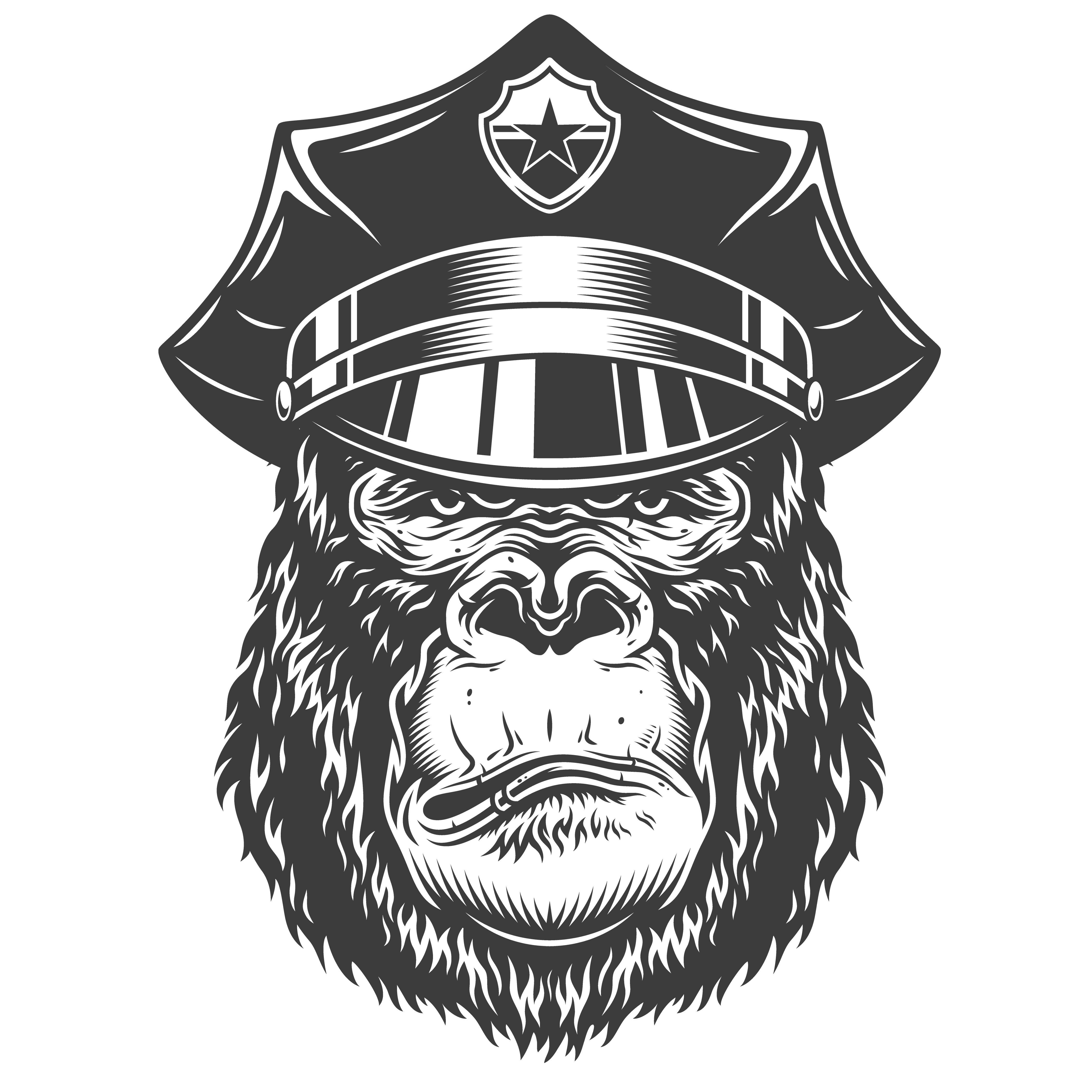 Kong Radio